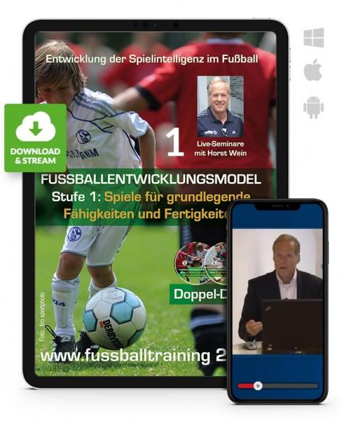 Fußball-Entwicklungsmodell Stufe 1 - Seminar 1 (Download)