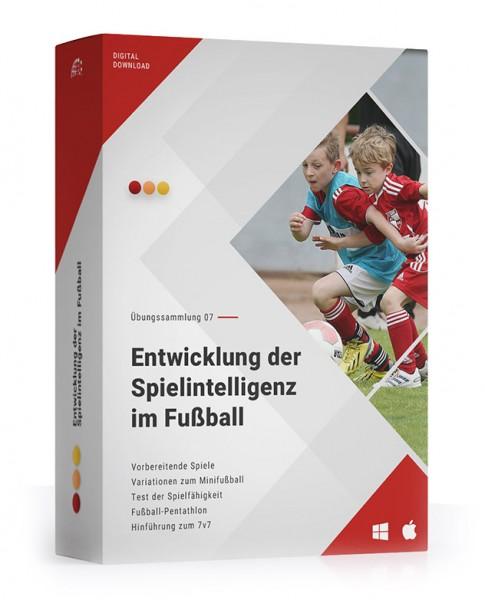 ÜS 07: Entwicklung der Spielintelligenz im Fußball