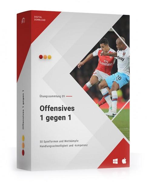ÜS 09: Offensives 1 gegen 1