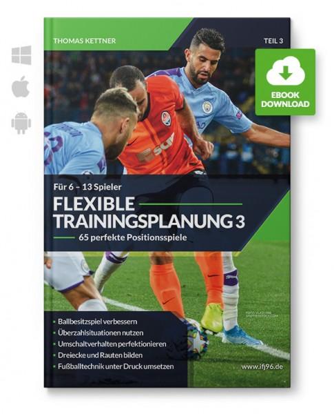 Flexible Trainingsplanung 3 - Positionsspiele für 6 bis 13 Spieler (eBook)