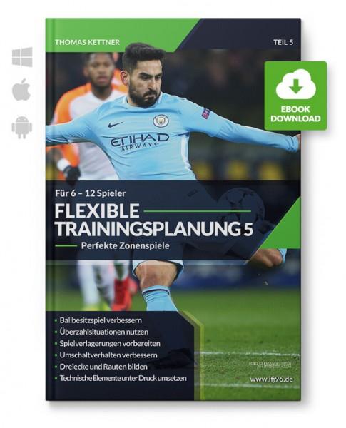 Flexible Trainingsplanung 5 - Zonenspiele für 6 bis 12 Spieler (eBook)