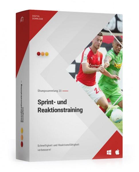 ÜS 23: Sprint- und Reaktionstraining