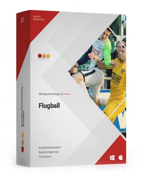 ÜS 24: Flugball